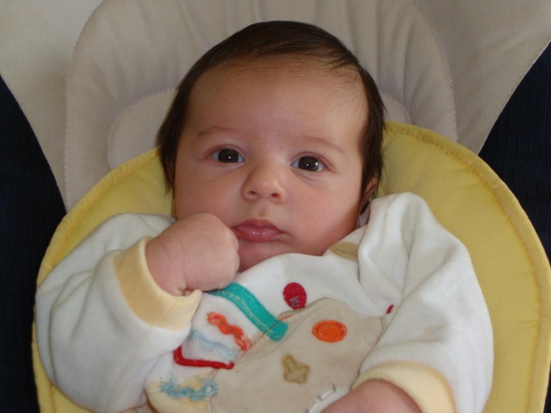 Leonardo marzo 2010
